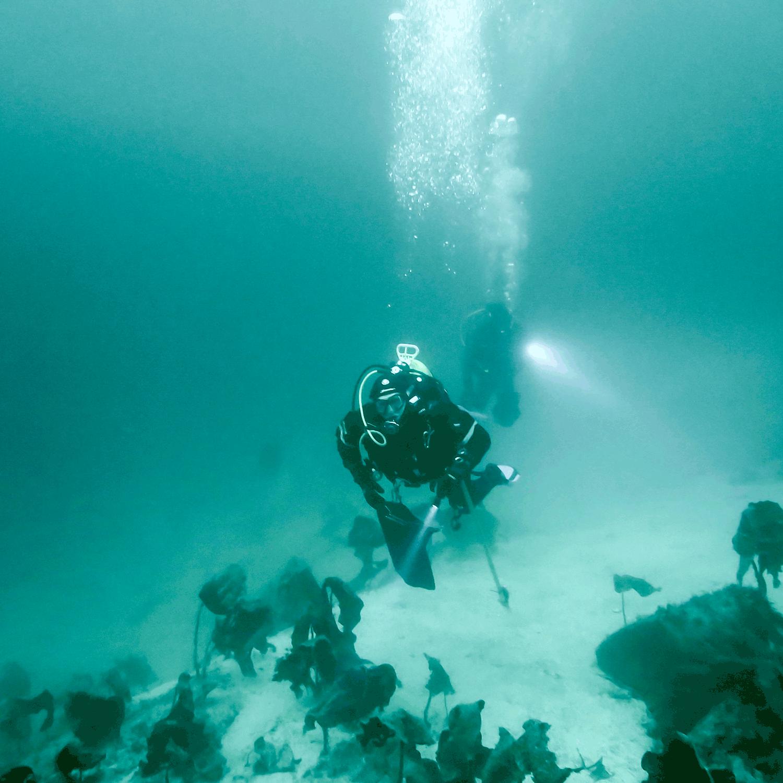 To dykkere i god sikt
